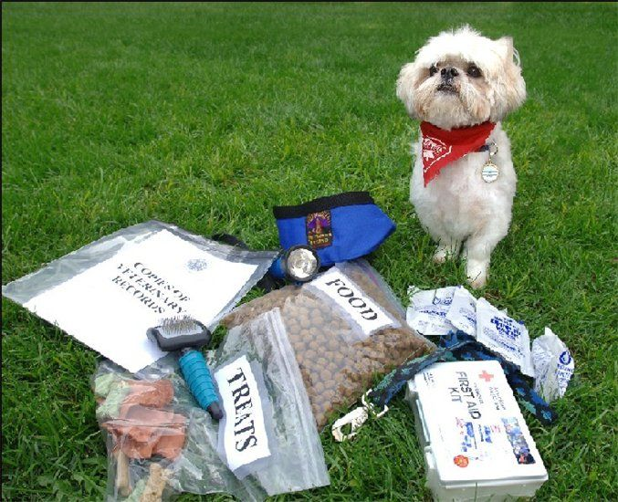 Emergency Prepardness Kit for your Pet