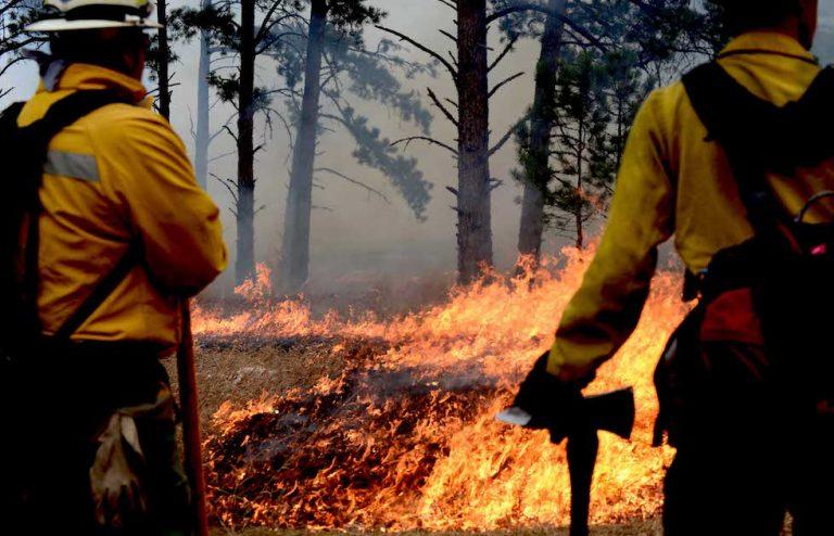 wildfire disaster preparedness plan